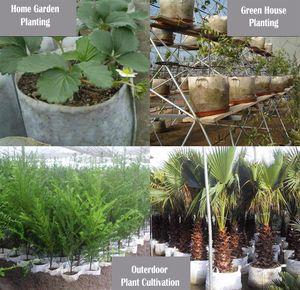 Bianco Tessuto non tessuto riutilizzabile soft-sided altamente traspirante Grow Vasi Planter borsa con manici di prezzi poco costosi Grande Fiore 10 Dimensioni Opzione