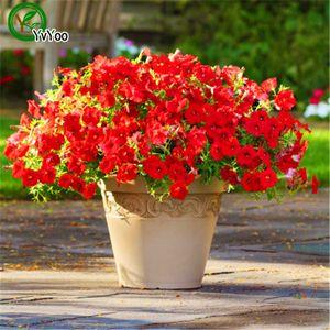200 PCS Pendurado Petunia Sementes Misturadas Petunia Anual Sementes de Flores Para Casa de jardim planta L056