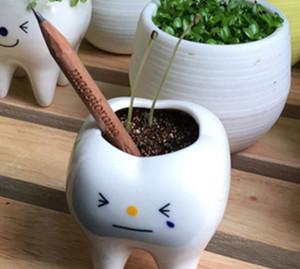 Venta al por mayor superventas FreeShipping 100 unids/lote negro creativo lápices crecen pequeños Bonsai planta 2B lápiz puede crecer lápices de hierba 002