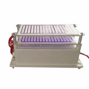 Poderoso 220 V / 110 v 16g Gerador de Ozônio Dupla Eletrodos De Aço Inoxidável Euro Plug Disponível Boa Dissipação de Calor Propriedade + Frete Grátis