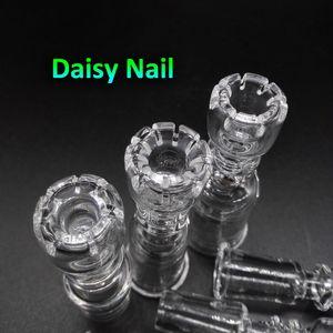 Beracky Daisy Domeless Quartz Banger Nägel mit Female Male 10mm 14mm 18mm Quarz-Banger Nägel für Glas Wasser Bongs Dab Bohrinseln