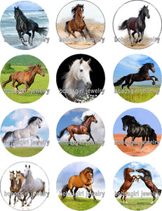 Envío gratis HORSE glass Snap button Jewelry Charm Popper para joyería Snap de buena calidad 12pcs / lot Gl322 Jewelry making DIY