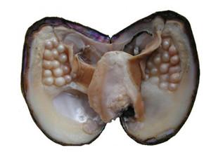 Presentes da jóia Shell Desejo Pérola Ostra Embalado a vácuo 3-9mm Aleatoriamente Cor / Em Forma de 100% Natural Real Pérolas em Ostra Monstro BP002