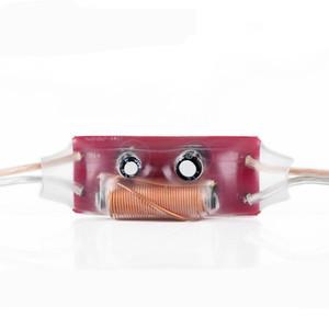 Freeshipping 2pcs 100W 3200Hz Car Home Audio Divisore di frequenza acuto singolo 2 Ordine Professione Filtro crossover