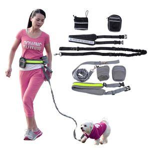New Design Durable Nylon Dog Leash Four -Piece Dog Pet Control Collar Elastic Hands Free Leash With Reflective Belt Adjustable Waistband