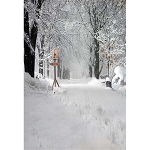 Dicker Schnee bedeckte Straße Außen Scenic Fotografie Kulissen Bäume Winterlandschaft Kind-Kind-Studio Fotosession Hintergrund