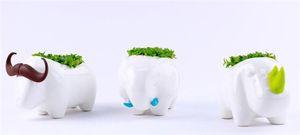 Al por mayor-Animal Desktop Planting Rhinoceros / / Elefante Home Planter Decoration Lovely Storage Office Pots Bonsai Decoración de la mesa