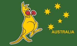 Avustralya boks kanguru Bayrak 3 mx 5 ft Polyester Banner Uçan 150 * 90cm Özel bayrak açık