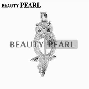 Pendente del gufo Cage Pearl Locket regalo zircone 925 Sterling Silver Jewelry Pendant Animal Fissaggi 5 Pezzi