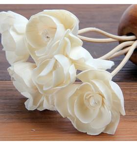 Kurutulmuş çiçek aromaterapi sola çiçek Aromaterapi kamışı doğal bitki Bitkiler kurutulmuş çiçekler saf doğal malzemeler bitkiler