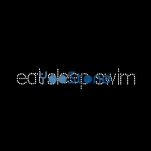 Eat Sleep Swim Rhinestone Transfer Iron On Hotfix Motif Hot Fix Applique