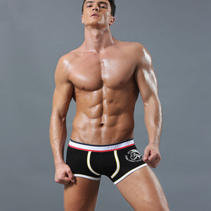 4 pcs Marca Sexy Men Underwear Boxers Trunks modais Mens Cotton Underwear Boxers Penis Pouch WJ U Convex Homem Cueca cintura NS007