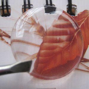 """Spedizione Gratuita Alta Trasparente 1 """"25.4mm Autoadesivo Trasparente Cabochon 3D Adesivo Resina Epossidica Morbido Mai Ingiallimento Personalizzato Accetta"""