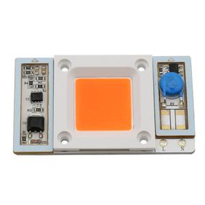 50W 30W Impermeabile Spectrum completo 380nm ~ 840nm Ingresso AC 220V 110 V Flip Chip LED Lampadina Lampadina Lampadina diodo Perline luce per la pianta crescere