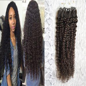 Бразильские волосы девственницы Micro Loop Extensions человеческих волос 100 г kinky вьющиеся вьющиеся микро-петли наращивание волос Micro кольца