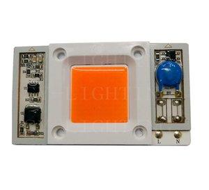Haute puissance 50W Driverless AC110V / 220V puce LED pilote intégré Full Spectrum 400-840nm Rose Lumière pour plante pousse
