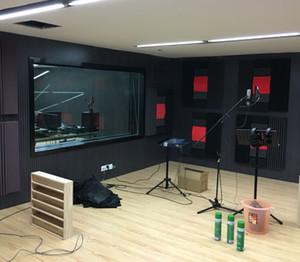 اللون الأسود مع رغوة مضادة للحريق الصوتية استوديو رغوة الصوتية لامتصاص استوديو الموسيقى غرف 4 قطع حجم 120 * 30 * 7.5 سنتيمتر