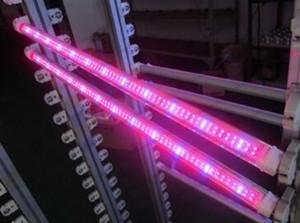 T5 튜브 성장 램프 18w 12.7W 120cm T8 LED 식물 성장 빛 빨강 및 파랑 PSE / CE / T-Tick / RoHS / UL / 5 년 보증 MYY