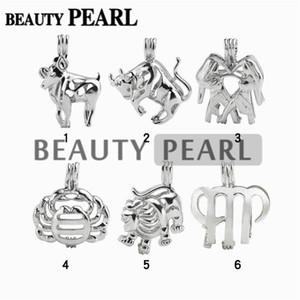 12 Pezzi All'ingrosso Gioielli lotti della miscela 18KGP della perla di amore Cage zodiaco ciondolo Gabbie Segno dei desideri Medaglioni