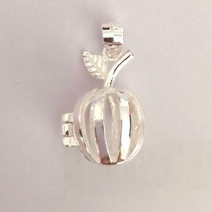 Katı 925 Gümüş Elma Locket Charm Can Açık Kafes kolye, gümüş kolye DIY Bileklik Gerdanlık Takı için Montaj