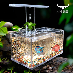 Akrilik akvaryum su ücretsiz izolasyon kutusu ofis masası LED masa lambası pompa filtresi ekolojik küçük akvaryum