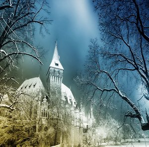 5x7ft Vinyl Digital Castle Mal Inverno Halloween Fotografia Estúdio Backdrop Fundo