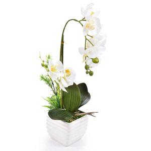 1 conjunto De Seda Real Toque Decoração de Casa Artificial Orquídea Phalaenopsis Arranjo de Flores Pequenas Plantas Bonsai Com Cerâmica Vaso De Flores