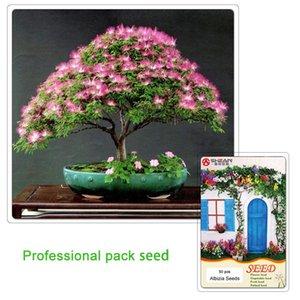Albizzia julibrissn semi di albero bonsai 100% semi di fiori Albizzia reali 50 pz / 1 confezione professionale