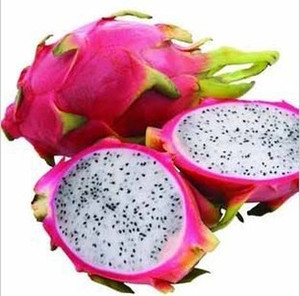 50 pz Semi Pitaya, BIANCO DRAGON Semi di Frutta, (Pitaya / Pitahaya / Strawberry Pear) bonsai Spedizione Gratuita