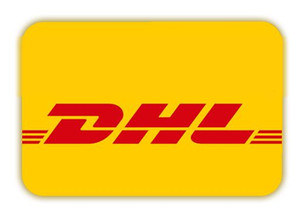 2020 Extra payment for fast ship with DHL