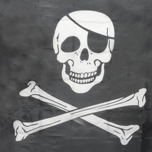 Top Grand Pirate Drapeaux Crâne et os croisés Jolly Roger Drapeaux Drapeaux bannière Bannière Suspendus w / œillets 5x3FT drapeaux publicitaires
