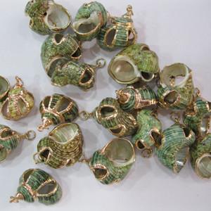 Altın Conch Plaj Deniz Kabuğu Boncuk Gevşek Altın Gümüş Cowry Cowrie DIY Boncuk Takı Bulguları Yapma Kolye Bilezik için
