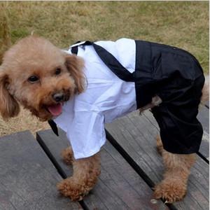 pet dog dress caballero traje falso dos piezas pequeño perro grande ropa fotos de la boda vestidos Swallowtail DHL libre PD023