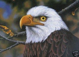 KARTAL, hakiki Saf Handpainted Hayvan Sanat yağlıboya Yüksek Kaliteli Kalın Tuval üzerinde Çok Boyutu tiann