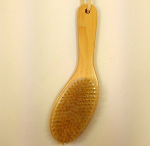 Wholesale-New Natural Bristle Dry Skin Exfoliation Brush Full Body Detox Fight Cellulite Tool