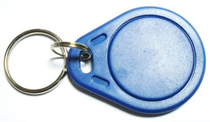 Лучшие дешевые цена по прейскуранту завода-изготовителя делают высокое качество TK4100 125 кГц 100 шт. / лот ISO11785 ABS RFID пользовательские Гравируемые брелоки брелки тег брелок