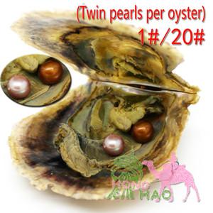 Twins Oyster Vacuum Pack 6-7mmAAAA Perla rotonda Oyster tinto Edison Perle d'acqua dolce Splendidamente presentato in guscio di ostrica