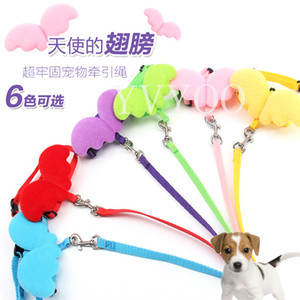 Cute Angel Pet Dog Guinzagli e collari Set Puppy Leads per cani di piccola taglia Cats Harness regolabile per cani Pet Accessori