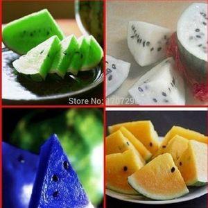새로운 5 종류의 매우 달콤한 수박 씨 과일 씨앗 노란색 빨강 파랑 흰색 녹색 희귀 야채 분재 레어 - 20 개 / 많은