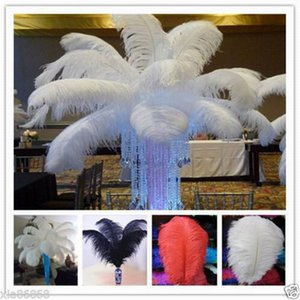 Ostrich Feather 10-100pcs Natural Ostrich Feathers 12-14inch 30-35cm White   Black