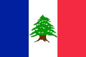 Il mandato francese del Libano Ensign Bandiera nazionale 3ft x 5ft poliestere bandiera di volo 150 * 90cm bandiera esterna su ordinazione