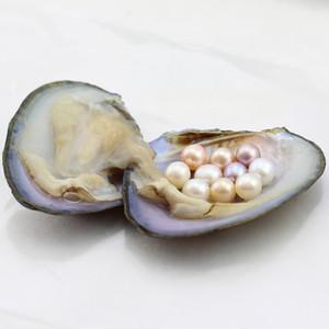 Ostra de perlas natural con 6-8 mm blanco rosa púrpura de perlas redondas para la joyería de la jaula de la perla que hace individualmente envasado al vacío al por mayor