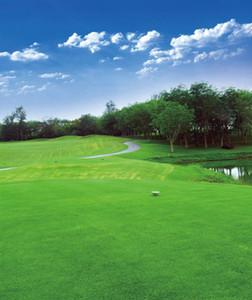 골프 코스 사진 배경 녹색 잔디 나무 푸른 하늘 구름 야외 자연 경치 좋은 사진 배경 스튜디오 부스 바탕 화면 비닐 8x10ft