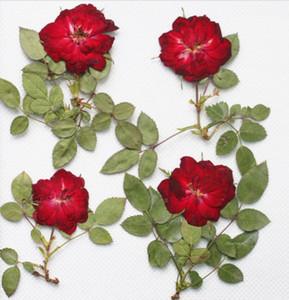 250 stücke Rot Gedrückt Getrocknete Rose Blume Mit BranchLeaf Für Epoxidharz Anhänger Halskette Schmuck Machen Handwerk DIY Zubehör