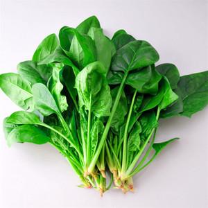 السبانخ الصيني الخضروات 1000 بذور سهلة الخضروات بذور الإرث طعم كبير