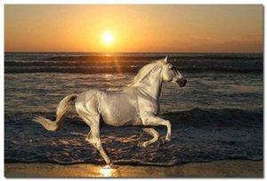 Çerçeveli Vahşi Beyaz At Plaj Günbatımında Koşu, hakiki Handpainted Hayvanlar Sanat yağlıboya Kalın Tuval Üzerine, Çok boyutları Ücretsiz Kargo HS072