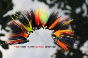 Tigofly 12 teile / los Assorted Tube Fly Set Für Lachsforelle Steelhead Fliegenfischen Fliegen Lockt Set