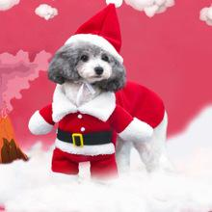 Yeni kış pet makyaj komik üç boyutlu köpek Noel giysileri Santa köpek ayakta giyim