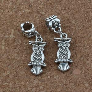 50 adet / grup Dangle Antik gümüş Dr. Baykuş Charm Big Hole Boncuk Fit Avrupa Charm Bilezik Takı 9.5x33.5mm A-237a