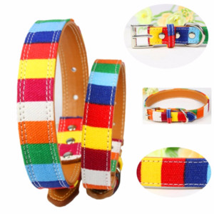 Leather Pet Dog collar Designer perro Collar Size XS M L Leather Plain for big small Colorful Rainbow pu Dog collar